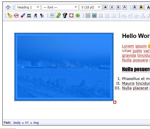 http://xinha.s3.amazonaws.com/screenshots/xinha-3.jpg
